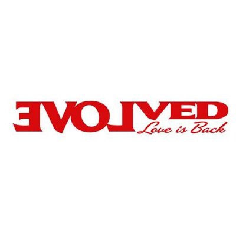 Evolved Novelties